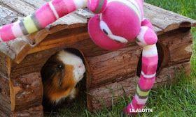 LiLaLotte: Der Affe ist los...Sockentier