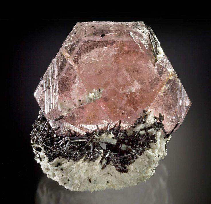 Morganite on Schorl from Urucum Mine, Minas Gerais, Brazil / Mineral Friends <3