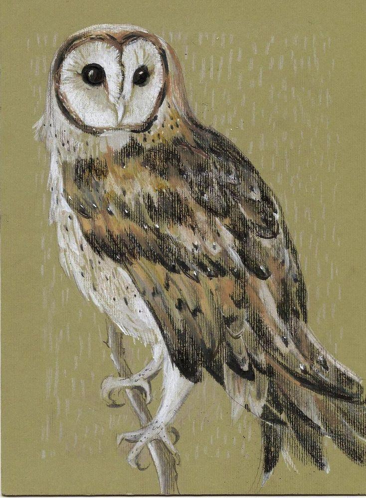 Original Barn owl animals fantasy home decor mixed media drawing #ContemporaryArt