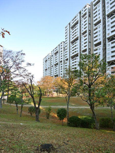 【芦屋浜団地】 まるでSF映画に出てくる未来都市のような風景が広がる団地。プレファブリケーションによる建築の工業化や、スーパーストラクチャーなど、時代のさきがけとなる存在。建物に囲まれる敷地には緑が茂り、豊かな住環境も実現されている。 #団地R不動産 #団地 #R不動産 #realdanchiestate #UR #UR都市機構 #公団 #公団住宅 #公団団地 #芦屋浜団地 #高浜町
