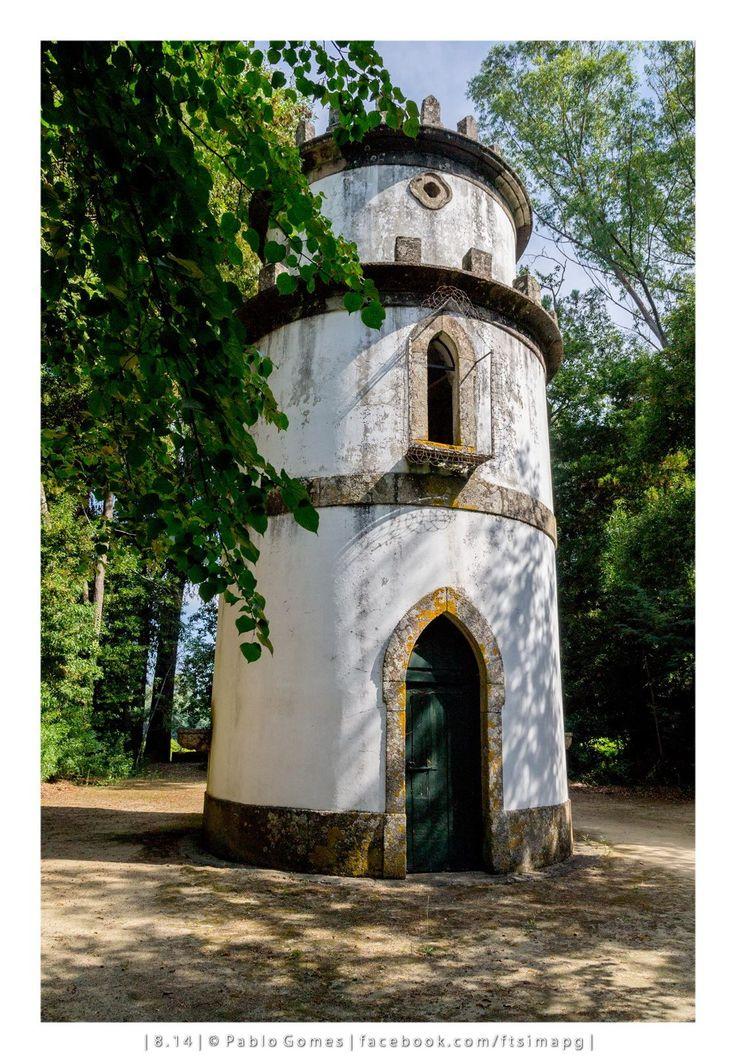 Bosque do Palácio da Brejoeira / Bosque del Palacio de Brejoeira / Brejoeira Palace Wood [2014 - Monção - Portugal] #fotografia #fotografias #photography #foto #fotos #photo #photos #local #locais #locals #europa #europe #tourism @Visit Portugal @ePortugal