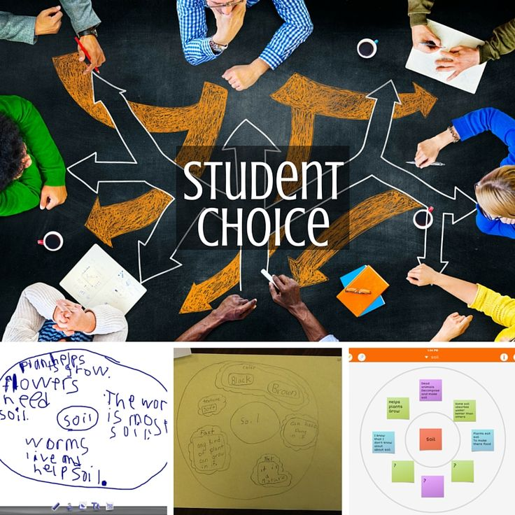 how to give students choices in the classroom
