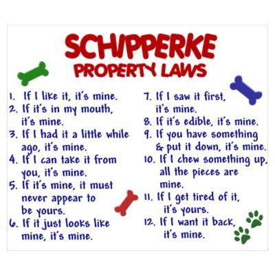 Schipperke Property Laws 2 Wall Art Poster