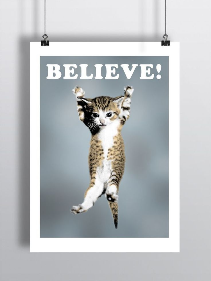 cat believe poster lego a3 size
