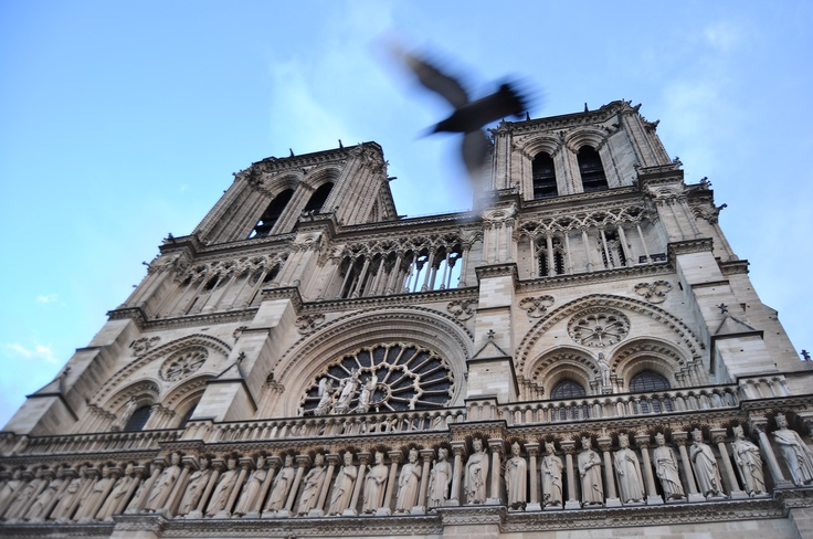 Notre Dame, Paris 2012: Paris 2012, Rachael Sanders, Sanders Photography, Our Lady