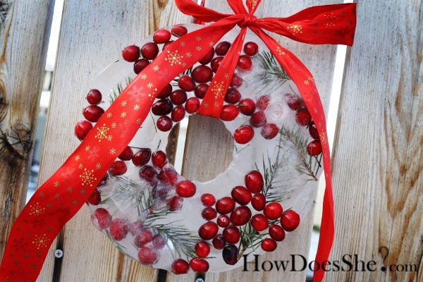 Cranberry ice wreathCranberries Ice, Crafts Ideas, Wreath Ideas, Ice Wreaths Cranberries, Reindeer Wreaths, Craft Ideas, Holiday Decor, Christmas Trees, Winter Wreaths