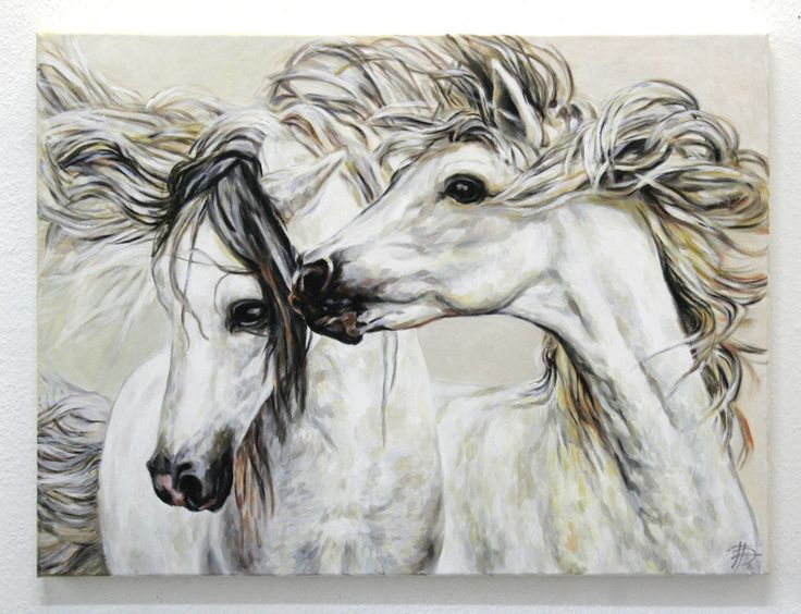 horse art pferde gemalt