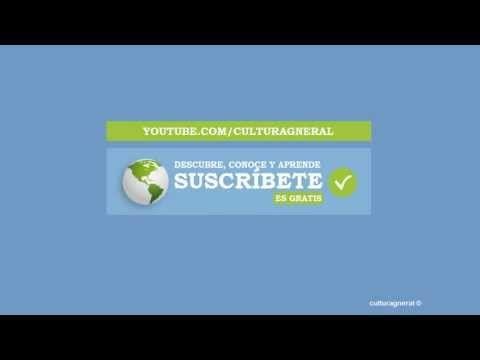 Célula Vegetal - Qué es la Célula Vegetal - Definición de Célula Vegetal