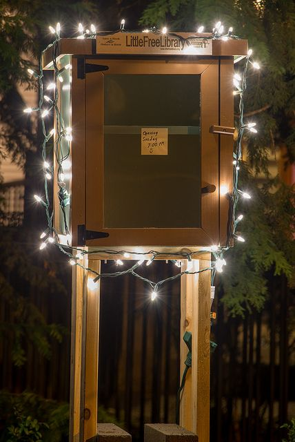 Girl Scouts Little Free Library Interior Design Ideas