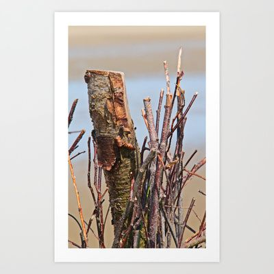 #Wood at the #beach Art Print by Andrea Fettweis - $14.98