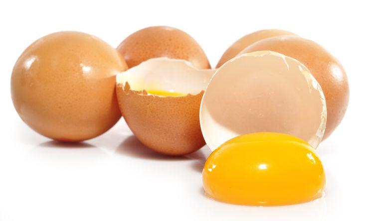Sonhar com gravidezes de ovos? É possível! http://palavrasdoabismo.blogspot.pt/2016/11/sonhos-marados-27-as-prenhas-poedeiras.html #sonhosmarados #dormir #insólito