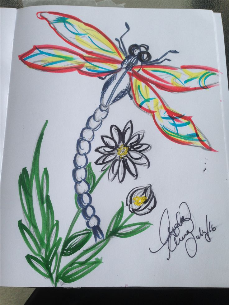Colourful dragonfly  Should have took a picture of it in pencil 1st, ahh well, still cool