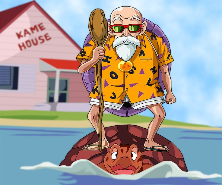 10 Best images about Master Roshi on Pinterest | Sketching ...