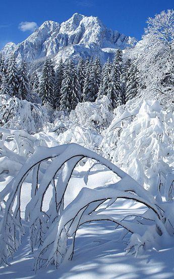 Beautiful Winter Outfit Www Pinterest Com: 17 Best Ideas About Winter Landscape On Pinterest