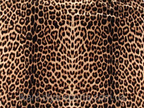"""Купить Стрейч бархат гладкий CHRISANNE (Англия) леопардовый (leopard print) в Киеве от компании """"Ткани для спорта и моды"""" - CHR/VEL/LEOPARD"""