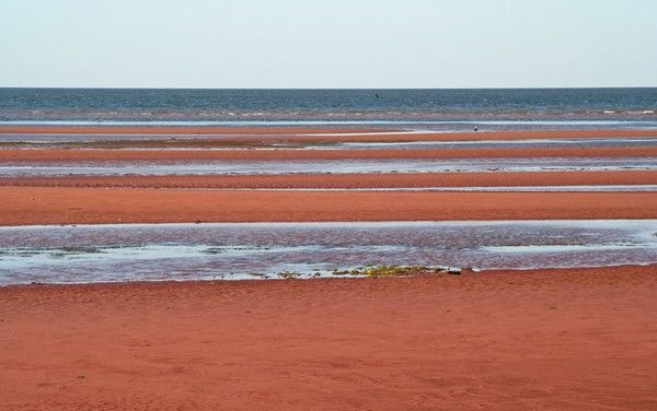 red sand beaches of nova scotia - Google Search