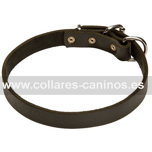 Estrecho collar de cuero natural hecho a mano para adiestramiento perros Dogo de Burdeos - C2 (25 mm)