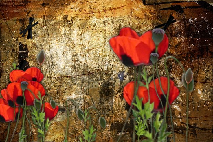 POPPIES ON RUST BY TATIANA LOPATINA.  VISIT OUR WEBSITE FOR MORE GREAT IMAGES www.lailas.com