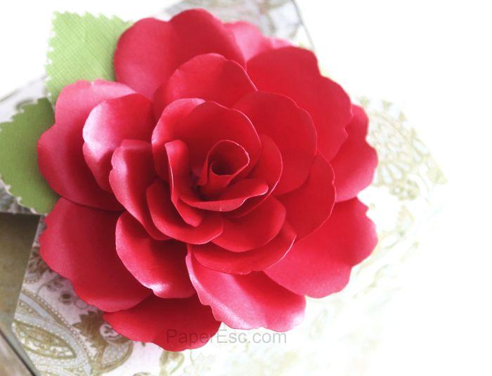 3d rose 3d box silhouette digital cutting file Lori Whitelock