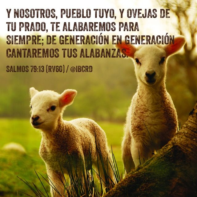 Salmos 79:13Reina-Valera 1960 (RVR1960) Y nosotros, pueblo tuyo, y ovejas…