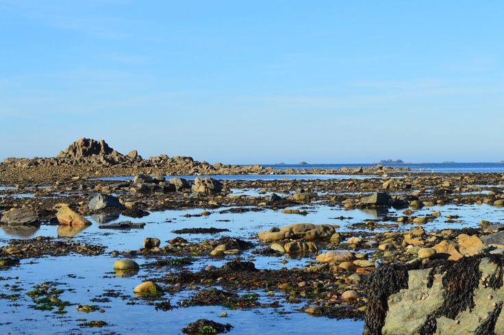 Rocks and Sea - Sillon de Talbert, Bretagne (France) - null