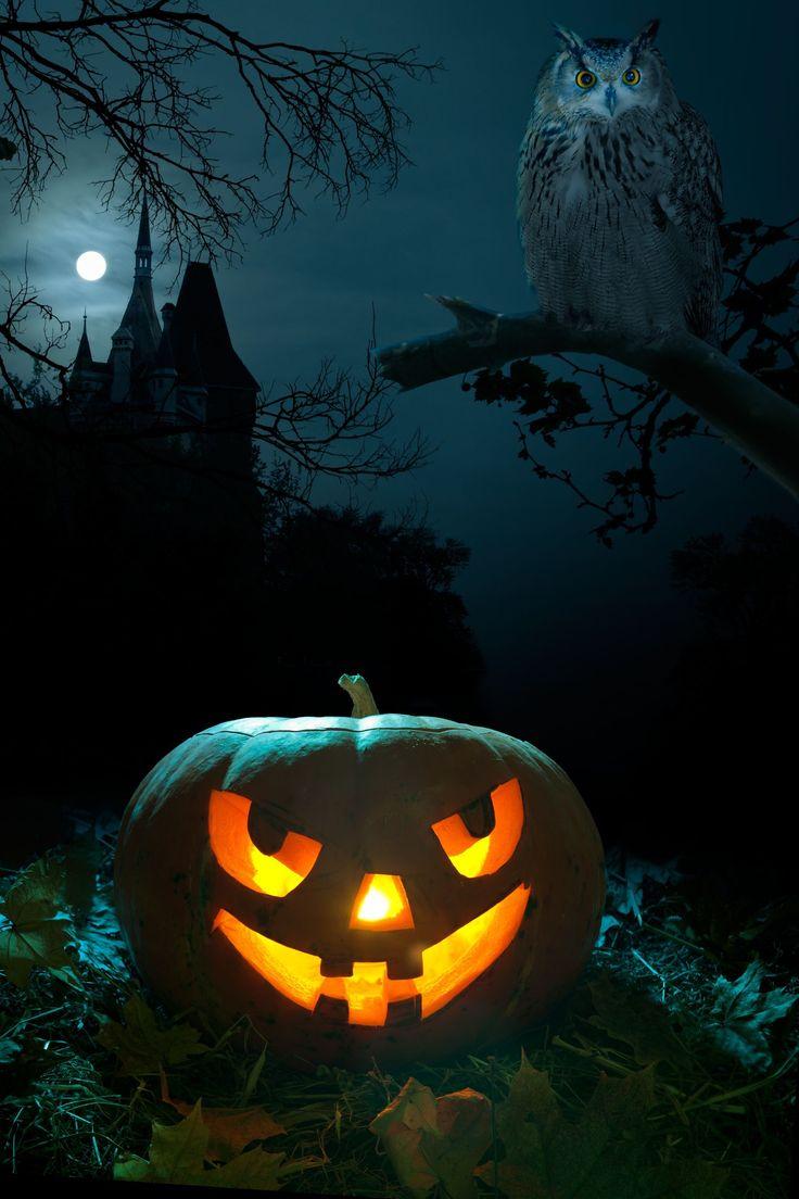 Halloween Wallpaper Cool Wallpapers Best Application For