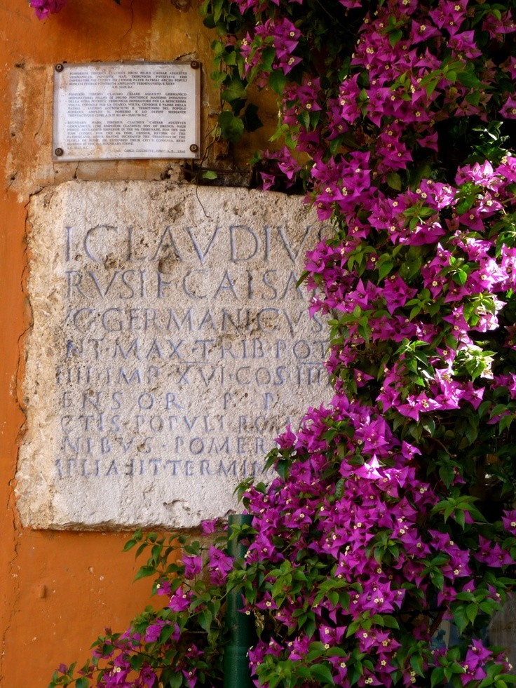 purple bougainvillea wrapped around an ancient latin sign in rome