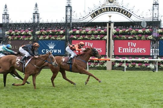 Melbourne Cup....first Tuesday in November..and the whole nation stops and listens to see who won!