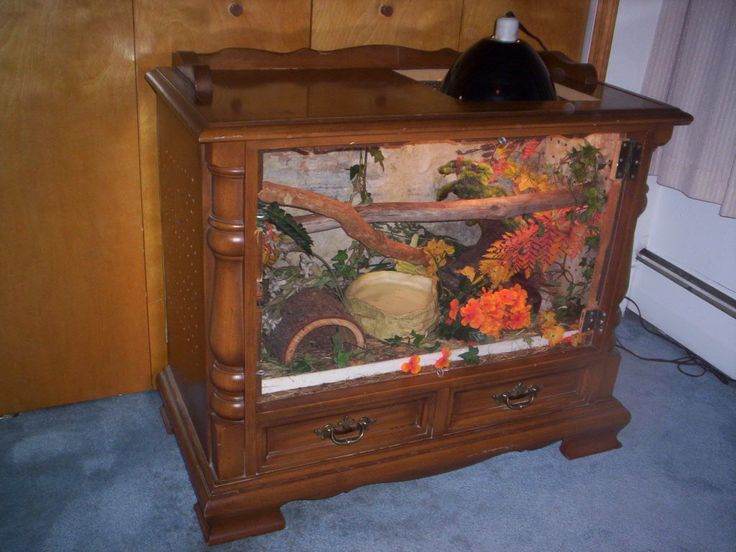 Home made snake tank, made from an old floor model TV...