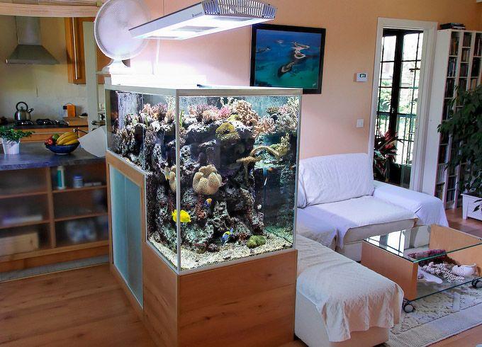 The Drop-Off Reef Aquarium of Philippe Grosjean | Reef Builders