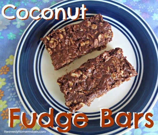 These Coconut Fudge Bars are a dark chocolate variety that is only lightly sweet, super coconuty, and oh so chocolaty rich.