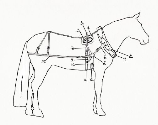17 best images about harness parts on pinterest