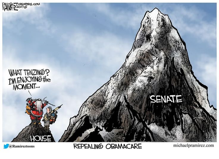 Daily political cartoons featuring Clinton, Trump, Obama and more from some of the best political cartoonists including Michael Ramirez and Henry Payne.