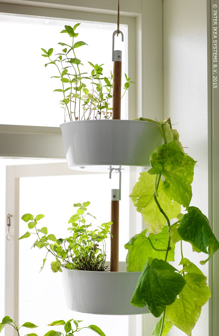 66 best stadstuinieren images on pinterest ideas for for Indoor wall planters ikea