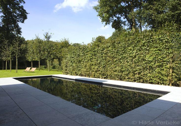 Betonzwembad met zwarte liner skimmer zwembad bij minimalistische woning de mooiste zwembaden - Zwembad kleur liner ...
