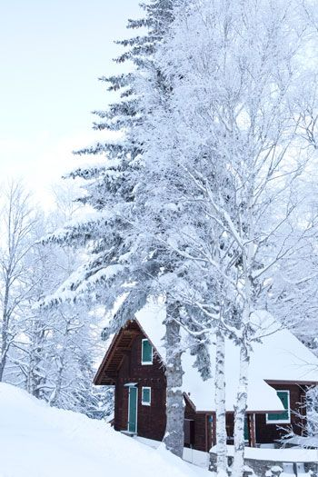 wish I were here right now, all by my lonesome, for about a week.  just me, the fireplace, a good book & peace & quiet!