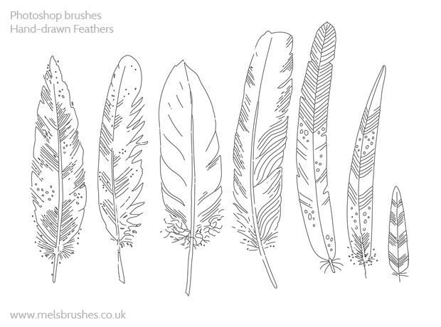 Six hand drawn feathers free to download. Photoshop brush set with7 medium resolution images http://www.melsbrushes.co.uk/?p=2679