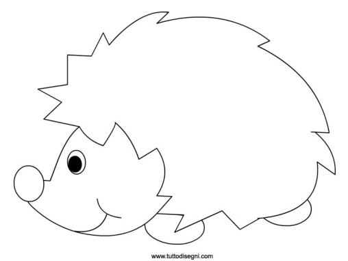 disegno-riccio
