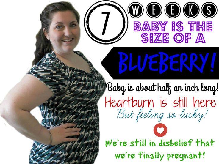7 Week Pregnancy Update! ♥
