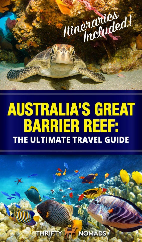 How to Visit Australia's Great Barrier Reef: The Ultimate Guide