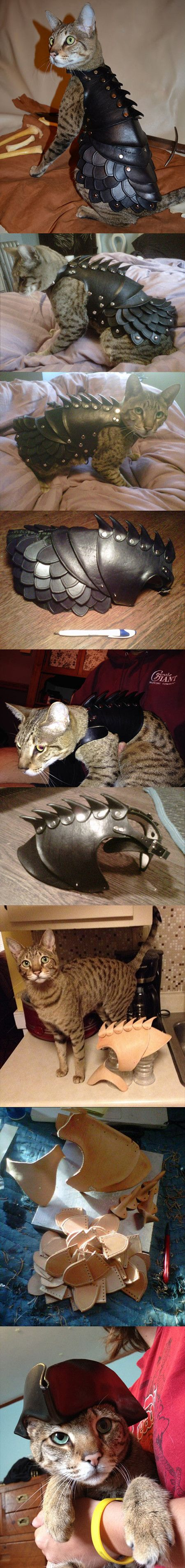 "You gotta love crazy cat people, if only for the entertainment value. You're looking at a handmade $500 Cat Battle Armor by an internet who goes by the name of ""schnabuble""."