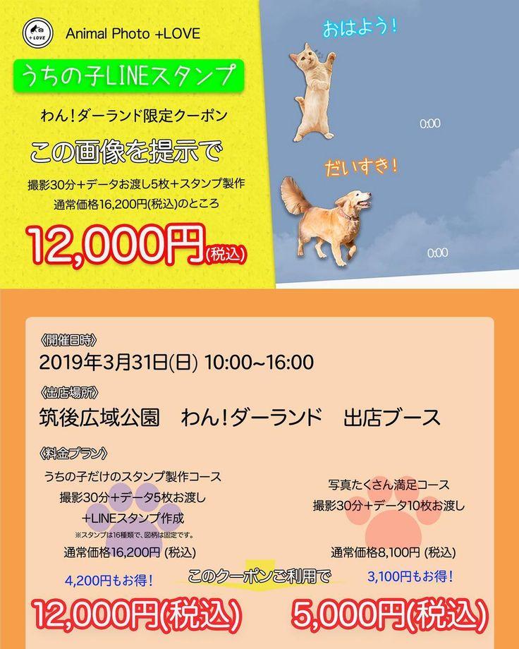 Watch The Best Youtube Videos Online 告知 3 31 日 10 0016 00に筑後広域公園で行われる九州の老舗 ペット雑誌犬吉猫吉さん主催のイベントにloveとして出店することが決まりました あなたのペットだけのオリジナルスタンプを作成します 詳しくはお気軽にお Playlist