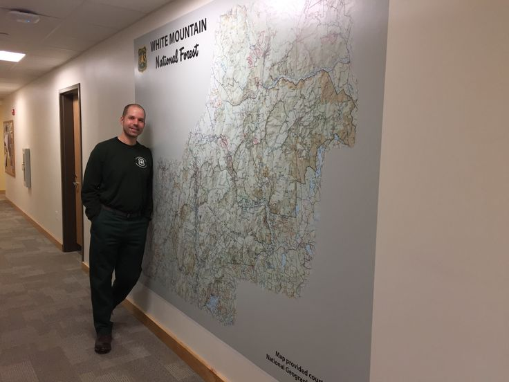 Delightful Turn A Map Into A Life Size Wall Mural Like We Did Here For The @ Part 9