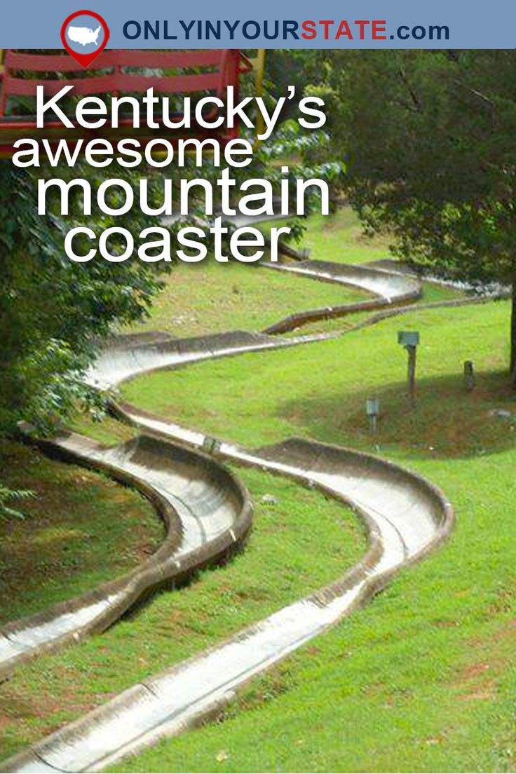 Travel | Kentucky | Attractions | Mountain Coaster | Outdoors | Adventures | USA | Things To Do | Places To Visit | Bucket Lists | Day Trips | Cave City | Kentucky Action Park | Kentucky Parks | Adventure Park