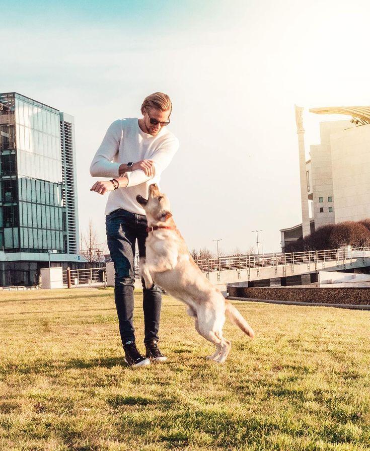"""9,911 kedvelés, 62 hozzászólás – H E N R Y K E T T N E R (@henrykettner) Instagram-hozzászólása: """"Imádtam ezt a kutyát  Próbáltunk egy rendes képet csinálni, de nem nagyon ment  Viszont rájöttem,…"""""""