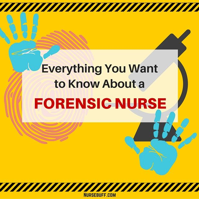 Everything You Want To Know About a Forensic Nurse #Nursebuff #Forensic #Nurse