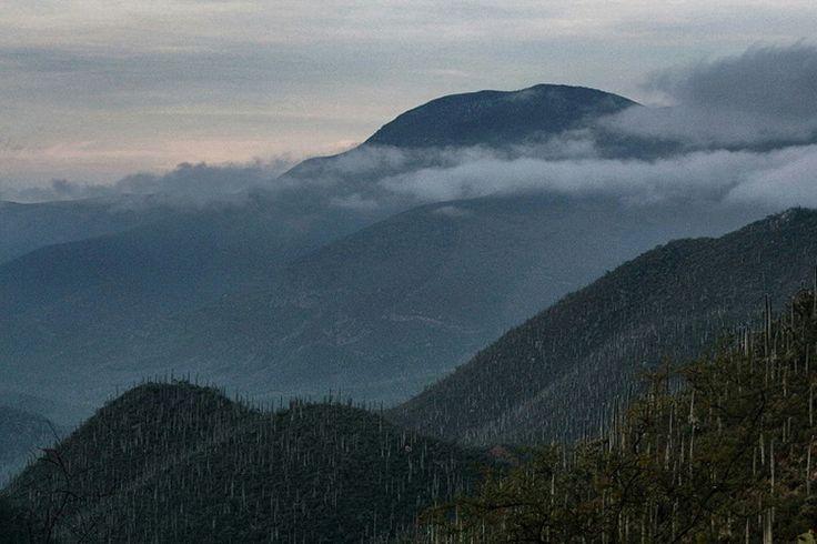 México deberá entregar información suplementaria a Unesco sobre valle de Tehuacán