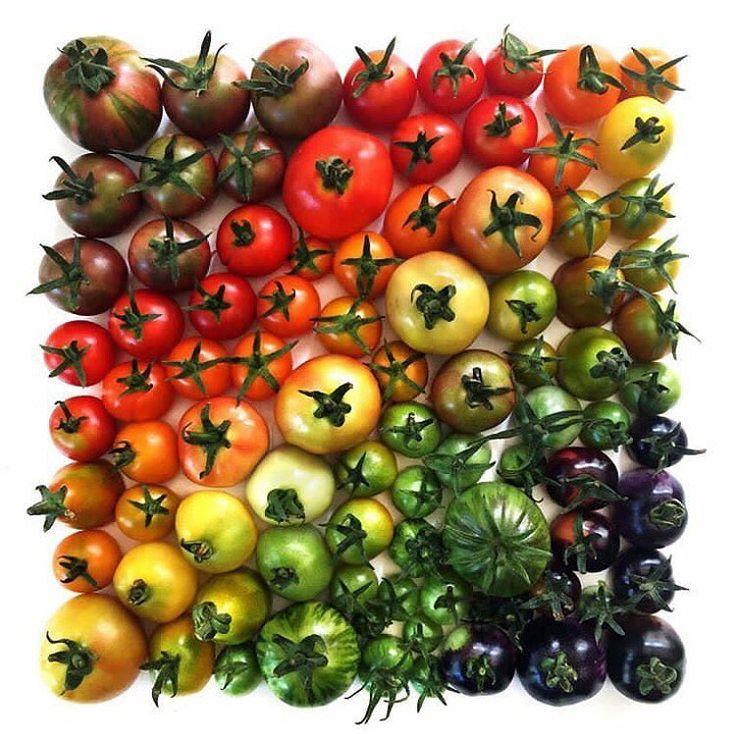 BEST FOOD PICTURES Fruits et légumes, Les cahiers de