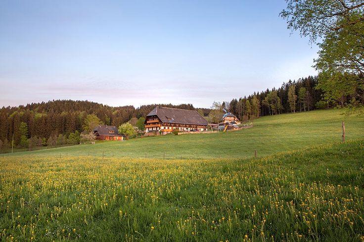 Weberhof - Urlaub auf dem Bauernhof in Hinterzarten am Titisee Schwarzwald