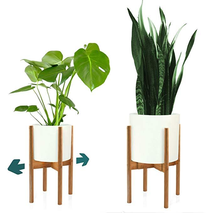 Fox Fern Mid Century Modern Plant Stand Adjustable Width 8 Up To 12 Bamboo Excluding Wh Mid Century Modern Plant Stand Plant Stand Modern Plant Stand